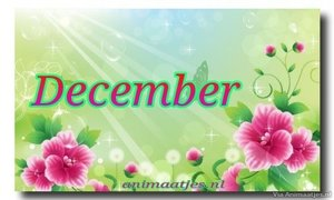 December Facebook plaatjes