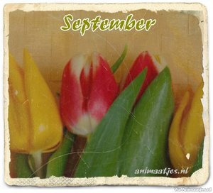 September Facebook plaatjes