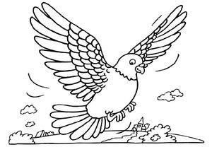 duiven kleurplaten 187 animaatjes nl