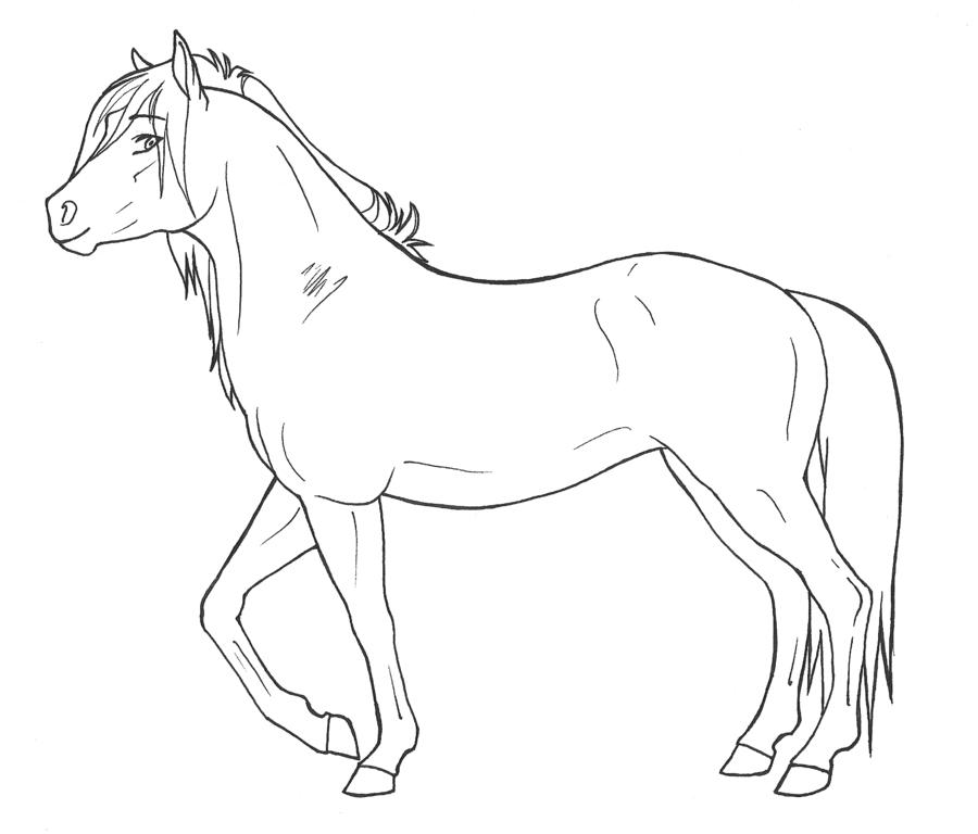 Paarden Kleurplaten 187 Animaatjes Nl