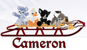 Cameron Naamanimaties