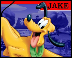 Naamanimaties Jake