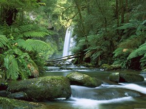 Australie Wallpapers Waterval Riviertje