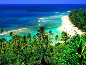 Hawaii Wallpapers Strand Beach Hawaii Blauwe Zee