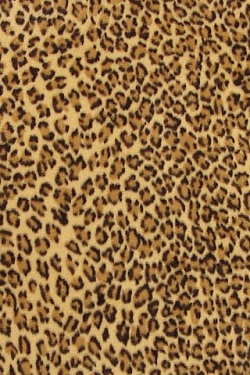 Jachtluipaard Wallpapers Iphone