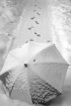 Sneeuw Wallpapers Iphone