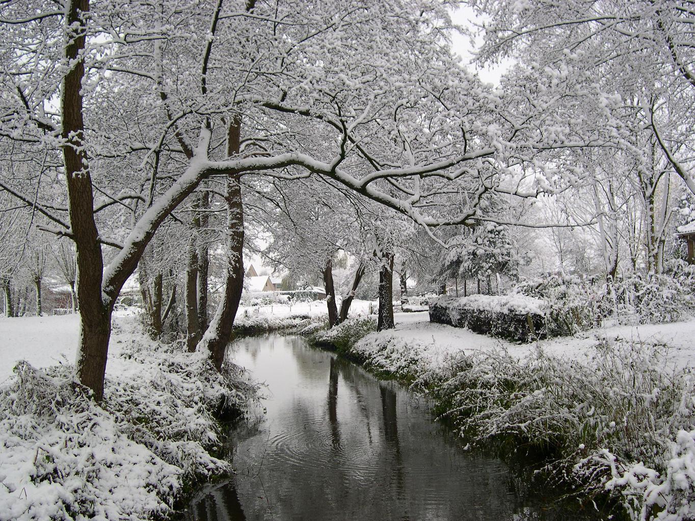 Sneeuw wallpapers - Foto van de eetkamer ...