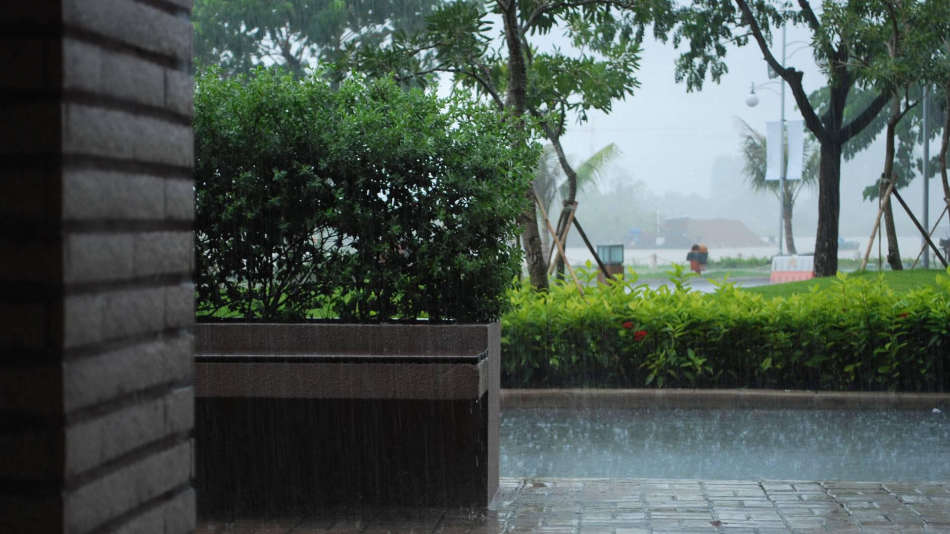 Regen wallpapers bureaublad achtergronden van regen - Rainy nature hd wallpaper ...