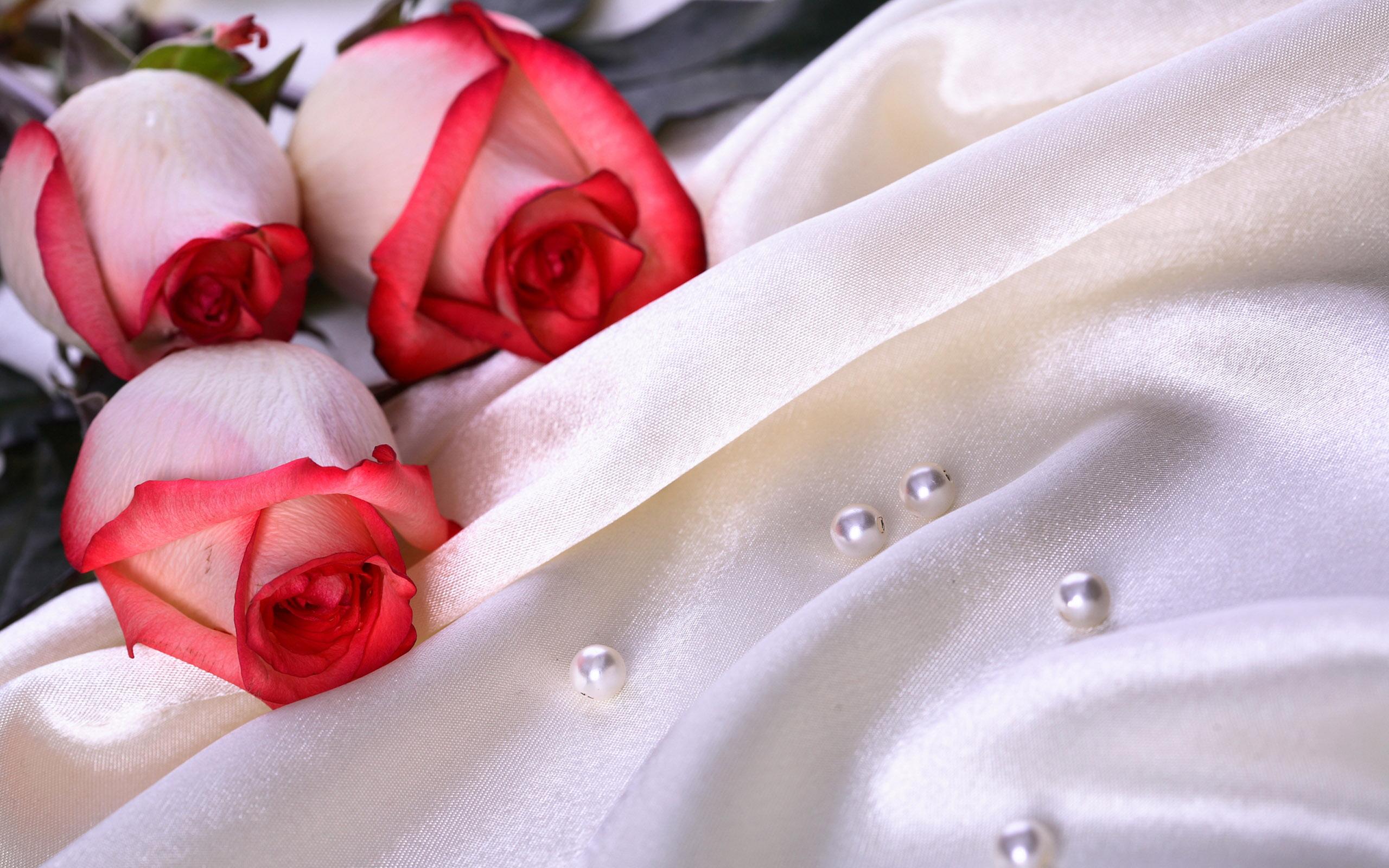 нежно-кремовые свадебные розы  № 1323079 без смс