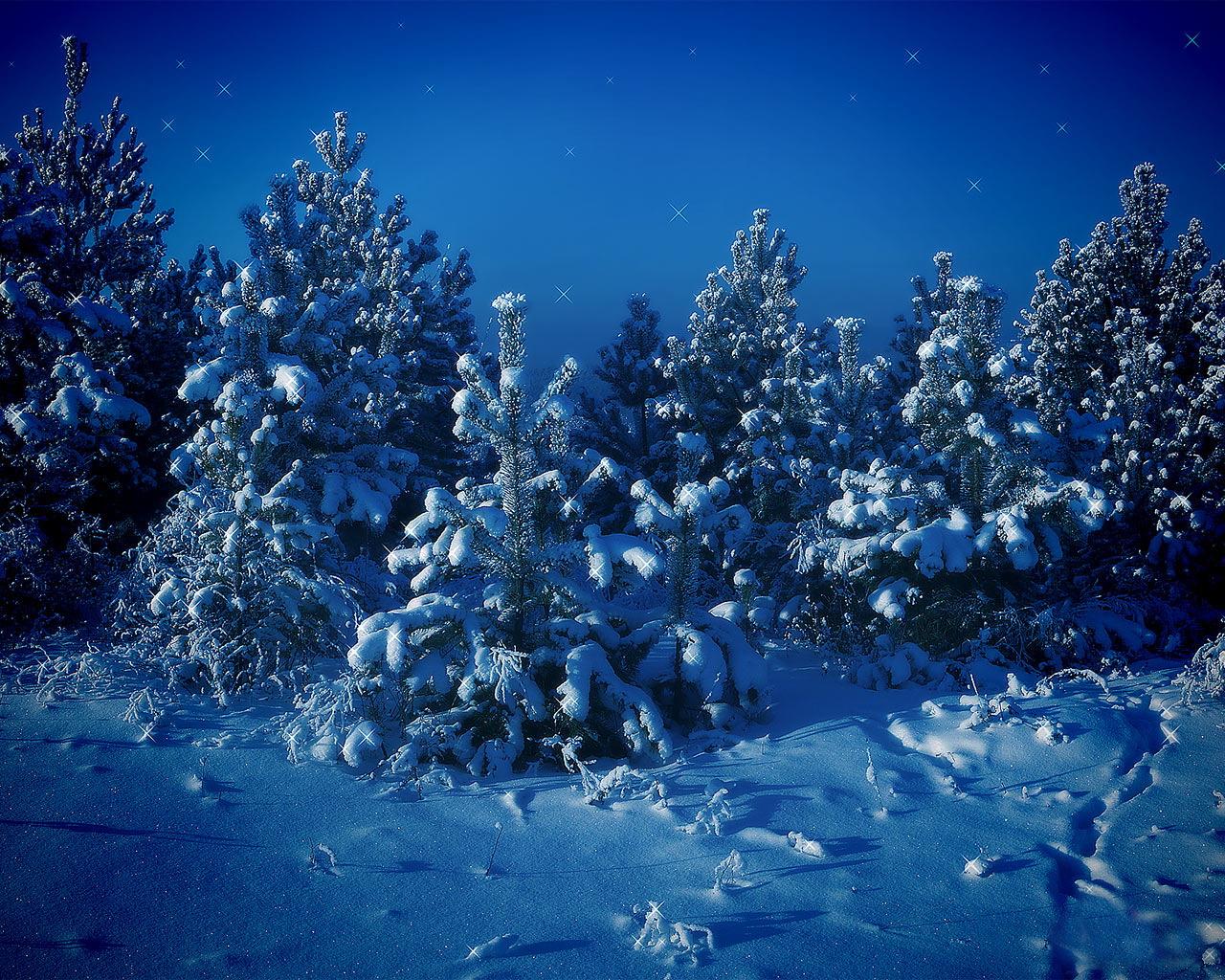 s1600 winter achtergronden winter - photo #21
