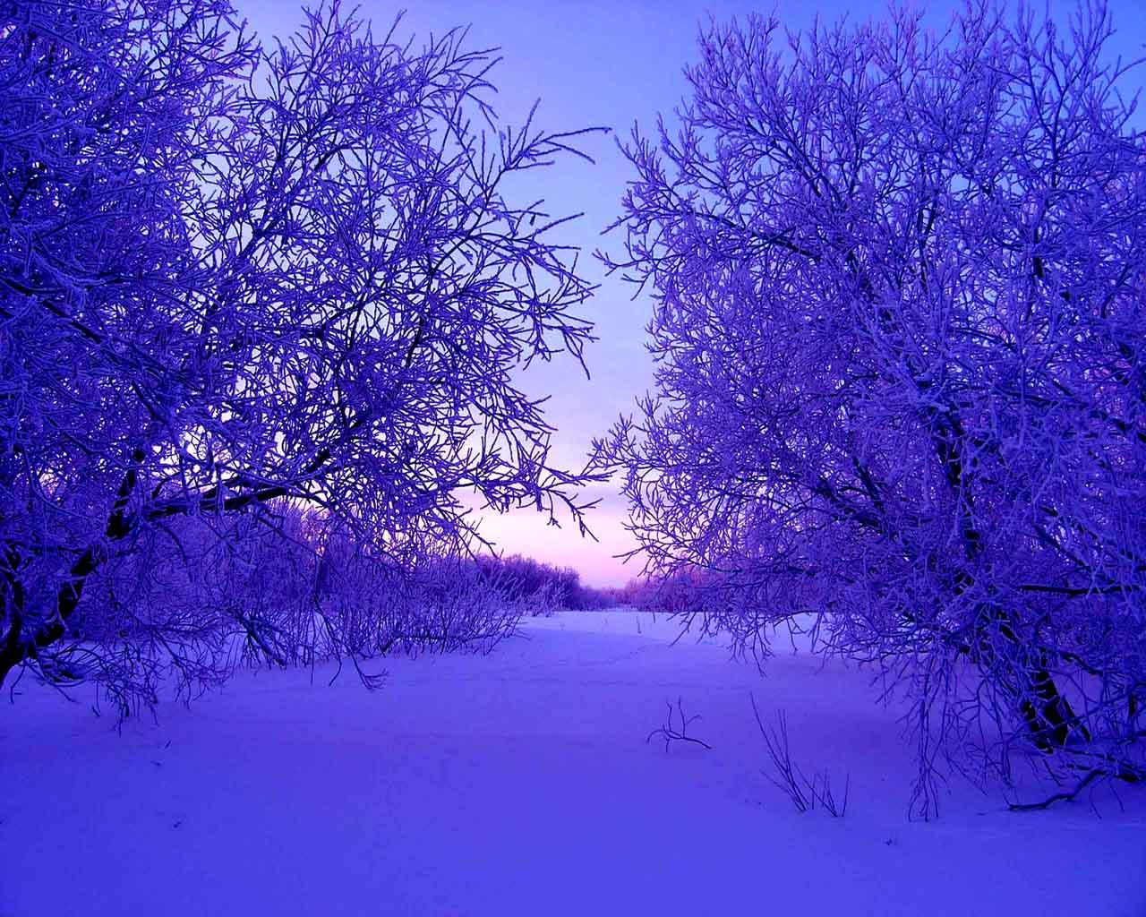 Winter wallpapers for Sfondi invernali hd